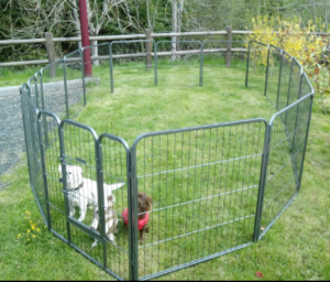Chenil pour chien enclos pour chien mon avis et - Fabriquer une niche pour chien pas cher ...