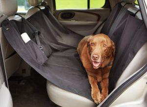 accessoires pour chien housse de voiture